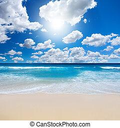 playa, paisaje, magnífico