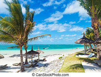 Playa rocosa de Mauricio con palmeras y sillitas