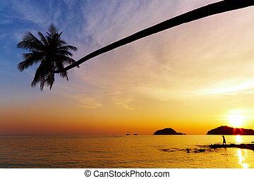 playa, tailandia, tropical