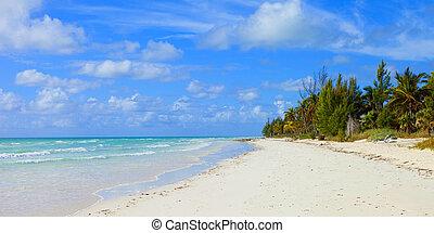 Playa tropical en Bahamas