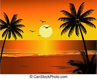 playa tropical, ilustración