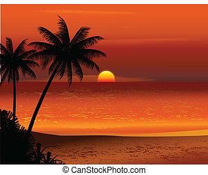 playa tropical, ocaso