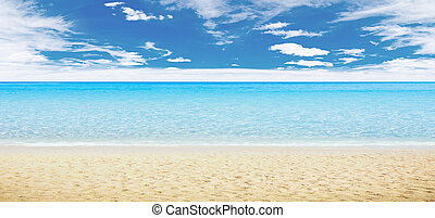 Playa tropical y océano