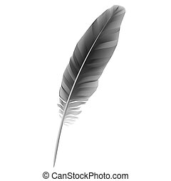 pluma, negro