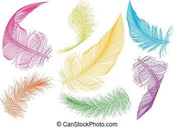 Plumas coloridas, vector fijado