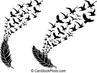 Plumas con aves voladoras, vector