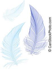Plumas de aves azules, vector