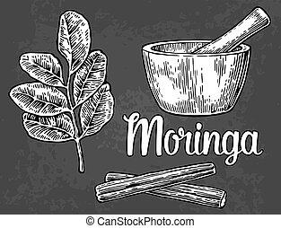 pod., illustration., mortero, hojas, vector, moringa, vendimia, pestle., grabado