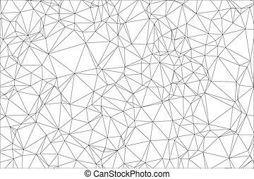 Polígono blanco y negro.