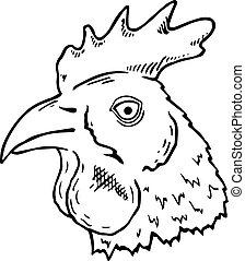 pollo, cabeza