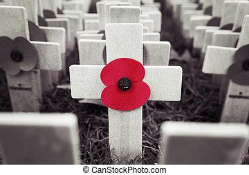 Poppy Cross, la exhibición del día del recuerdo