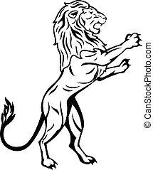 posición, león
