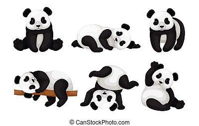 posturas, árbol, oso, set., diferente, vector, acostado, animal, panda, suelo, al revés, vuelta