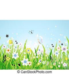 Pradera de primavera hermosa