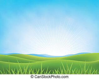 primavera, plano de fondo, verano, praderas, o
