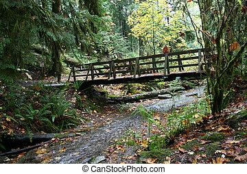 Pristine fall bridge