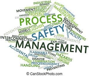proceso, dirección, seguridad