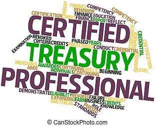 Profesional de tesorería certificada