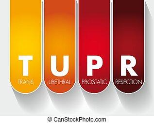 prostatic, plano de fondo, siglas, tupr, -, urethral, resección, concepto, médico, trans