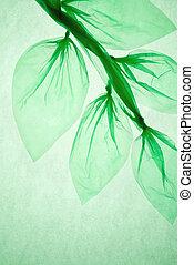 protección, madera, planet., hoja, plástico, verde, concepto, bolsa, hecho, aire, ahorro, ambiental, limpio, color.