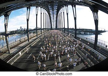 puente, cruz, race., puerto, sydney, durante, corredores, maratón