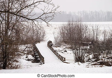 Puente de invierno