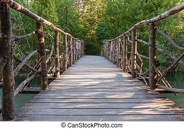 puente de madera, parque