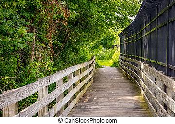 Puente de verano