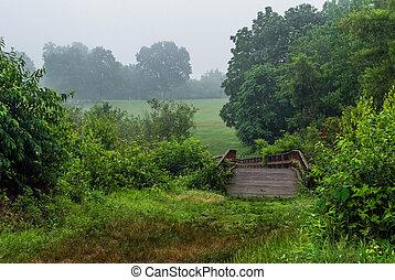 Puente en Meadow