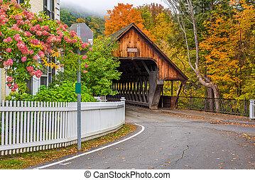 puente, medio, vermont, cubierto, woodstock
