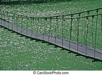 Puente,