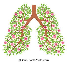 Pulmones sanos