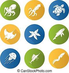 pulpo, natación, aquarium., jellyfish., plano, sombra, animales, ilustración, mar, patín, marina, turtle., inhabitants., iconos, silueta, largo, ballena, estrellas de mar, glyph, diseño, set., submarino, vector, calamar
