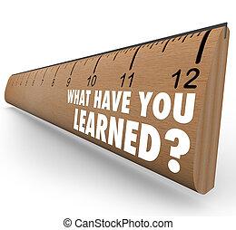 qué, reacción, regla, revisión, tener, recap, usted, aprendido