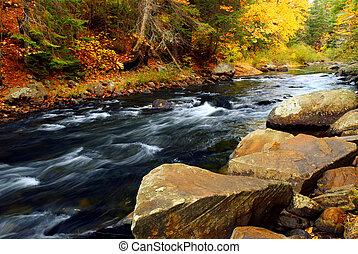 Río Bosque en otoño