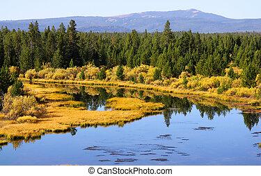 Río de piedra amarilla