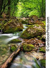 Río profundo en la montaña