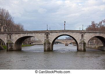 Río Seine con puentes