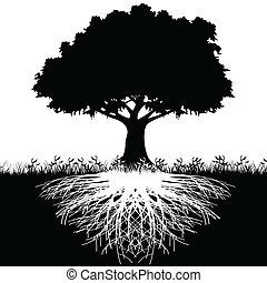 Raíz de árbol silueta