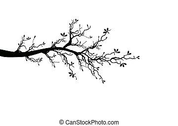 Rama de árbol de primavera