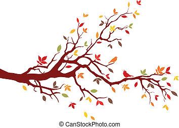 rama, otoño