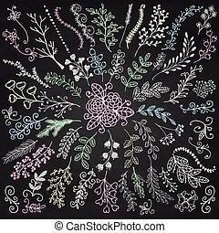 ramas, tabla, floral, sketched, menú, vector, rústico, mano