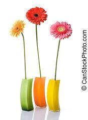 ramo, aislado, florero, vidrio, daisy-gerbera, blanco