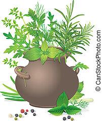 ramo, hierbas, olla, cerámico, fresco