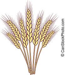 ramo, vector, trigo, orejas