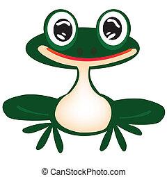 rana verde en blanco