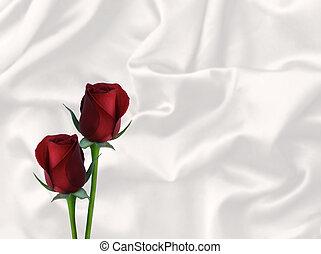 raso, rosas, valentine, dos, blanco rojo