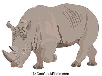 raster, ilustración, rinoceronte