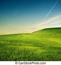 Rastros de avión sobre colinas verdes