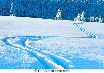 Rastros de esquí en superficie de nieve y bosque de abetos detrás.